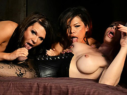 Dungeon orgy. Exciting Ashley George in a wild tranny dungeon orgy